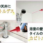カビトルデスPRO(150g)の口コミ・評判【楽天ver.】